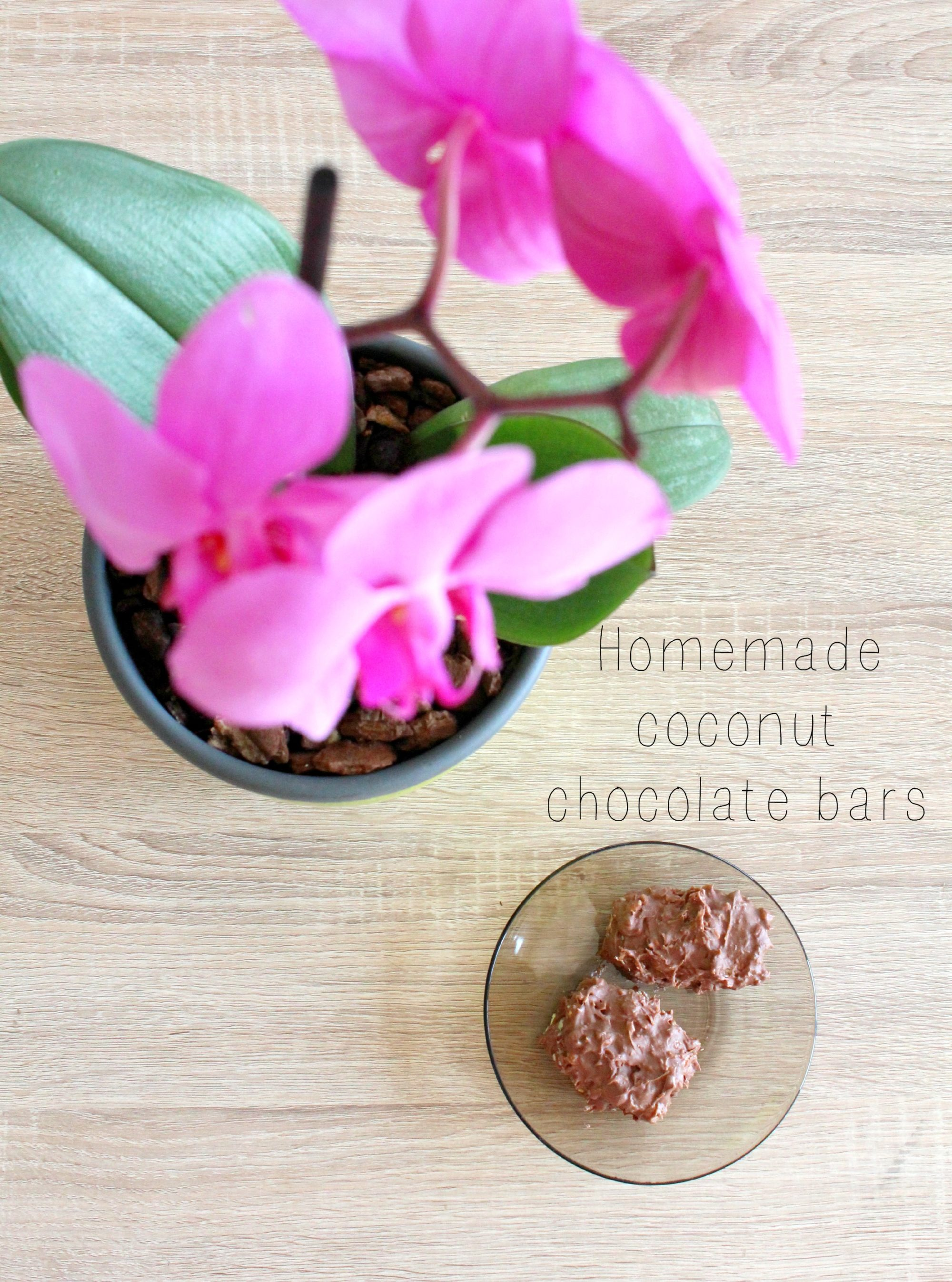 Homemade coconut chocolate bars