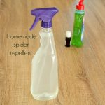 How to make your own natural spider repellent