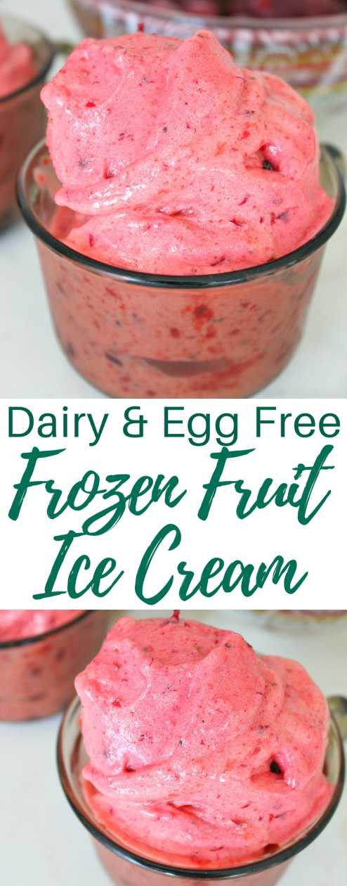 Frozen fruit ice cream