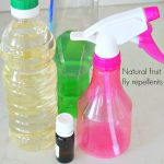 Easy DIY Natural fruit fly repellents