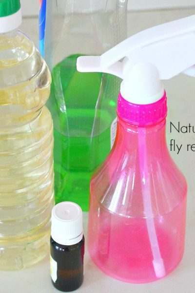 Easy DIY Natural Fruit Fly Repellent Ideas