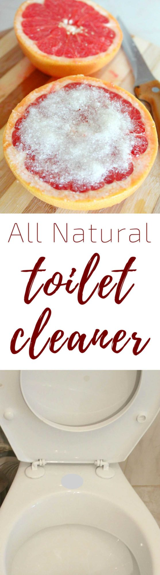 Natural Toilet Cleaner That You Can Make In Minutes