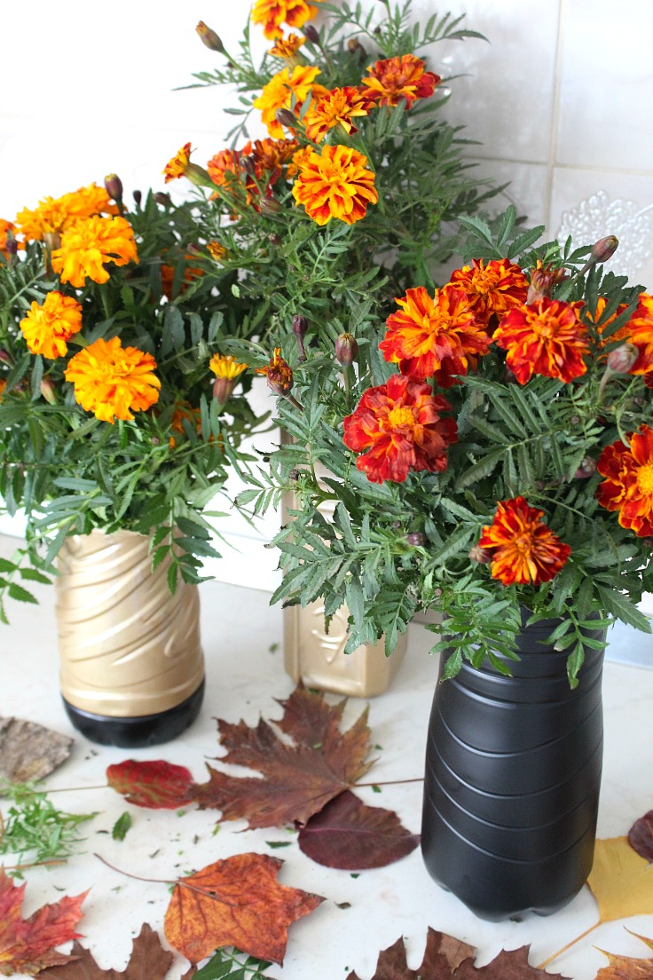 Diy flower vase out of plastic bottle for Flower pot making with waste material