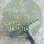 Natural way to freshen up a stinky carpet