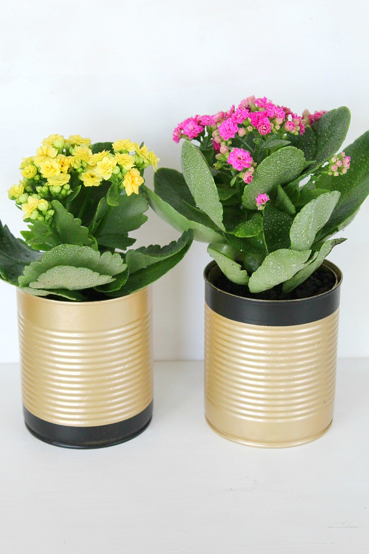 how to make tin can flower pots. Black Bedroom Furniture Sets. Home Design Ideas