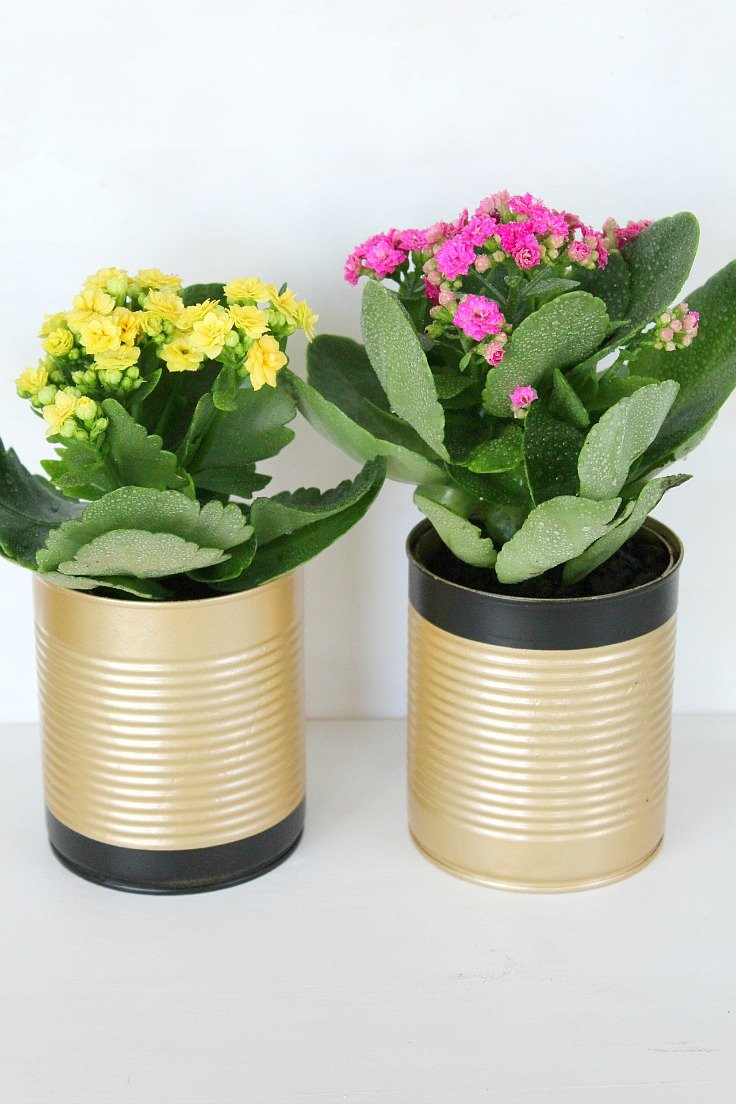 how to make tin can flower pots
