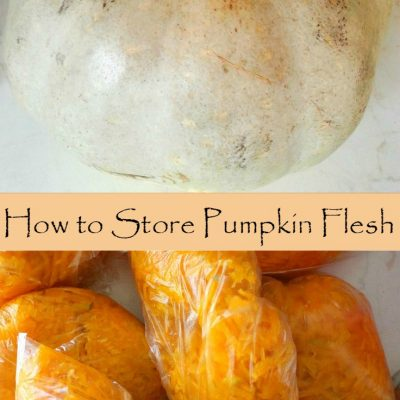 Simple way to preserve pumpkin flesh