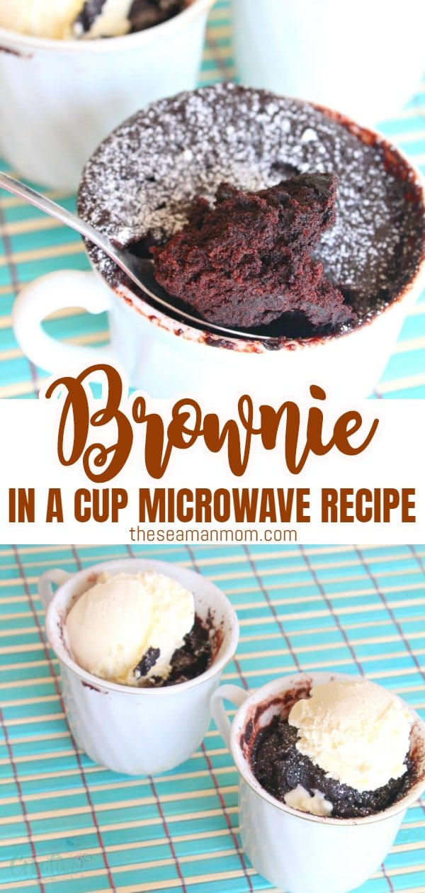 This microwave brownie recipe is the quickest and easiest way to satisfy a sweet tooth! Enhance the cocoa flavor with a scoop of vanilla ice cream! via @petroneagu