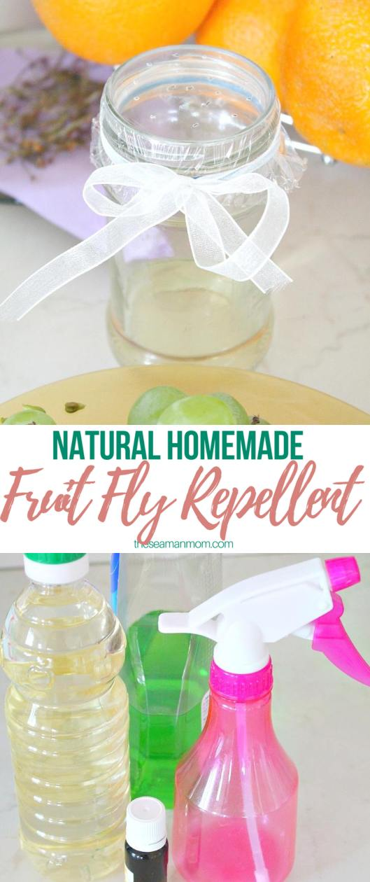 Fruit fly repellent