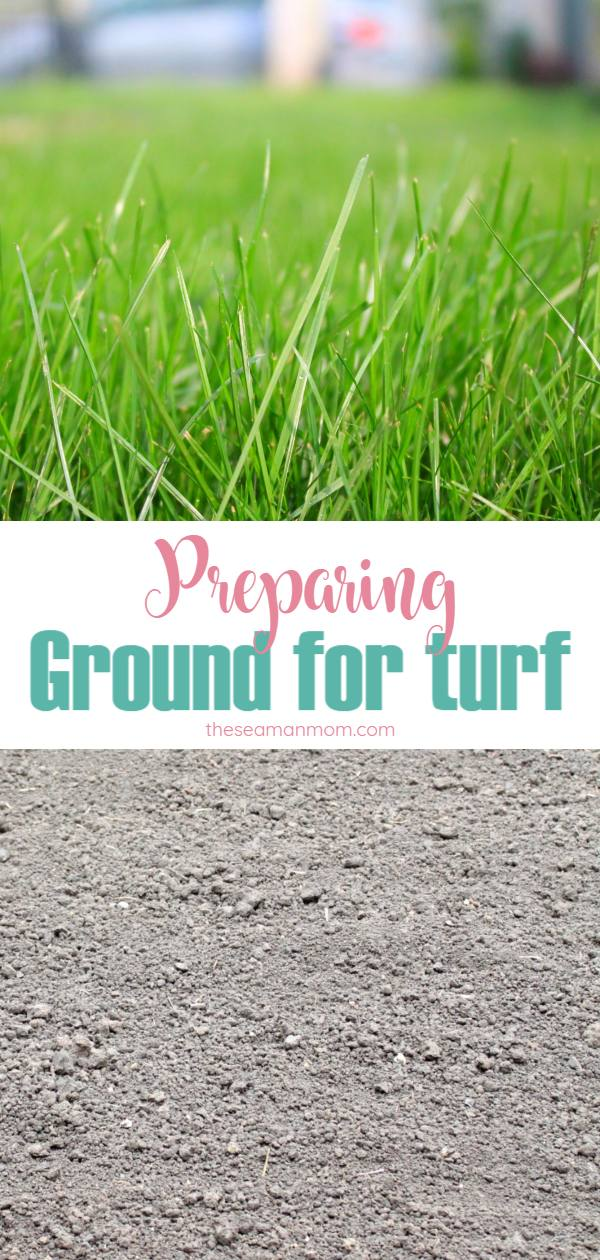 Preparing ground for turf