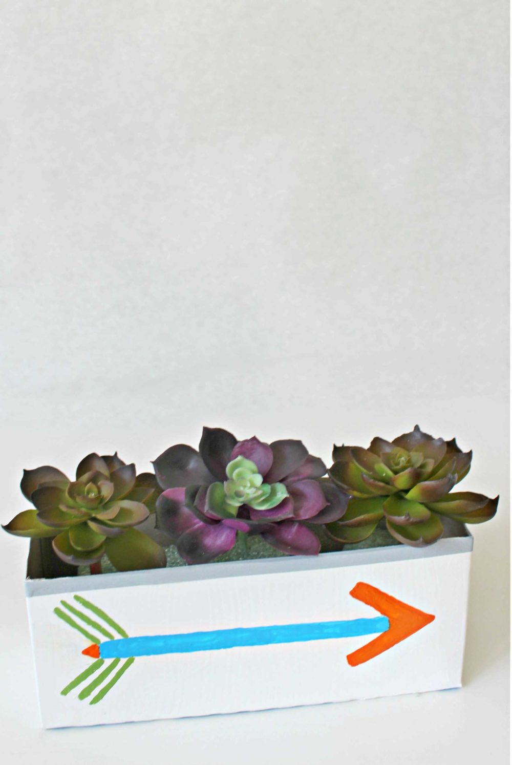 DIY succulent planter with recycled cereal box