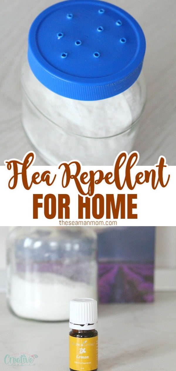 Get rid of those nasty fleas the healthy, natural way with this flea repellent for home! Making a homemade flea killer for your home is so easy and convenient, using just a few simple, inexpensiveingredients you most likely have on hand! via @petroneagu