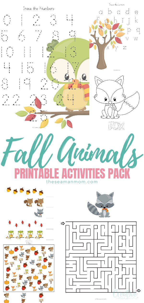 picture relating to Fall Printable Activities referred to as Autumn Pets Routines, Enjoyment Printable Pack For Youngsters