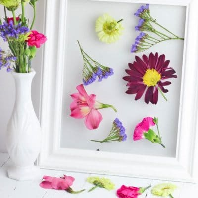 Framed dried flowers craft