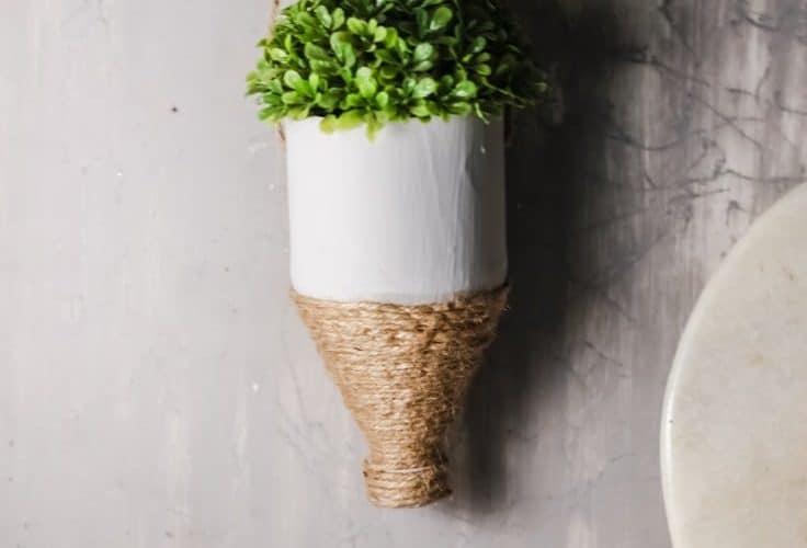 Water bottle planter