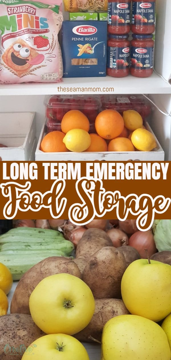 An emergency like a pandemic or a natural disaster could leave you reliant on your existing food supply. It helps to have an emergency food supply list on hand so get your pantry ready with these simple ideas for foods to stock up on! via @petroneagu