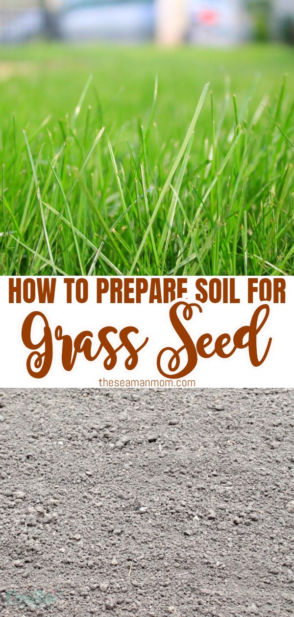 Growing a healthy lawn from scratch requires a healthy soil. Success or failure is strongly tied to the way you get the soil for grass ready for seeding. Here are some simple but necessary steps forpreparing ground for turf. via @petroneagu