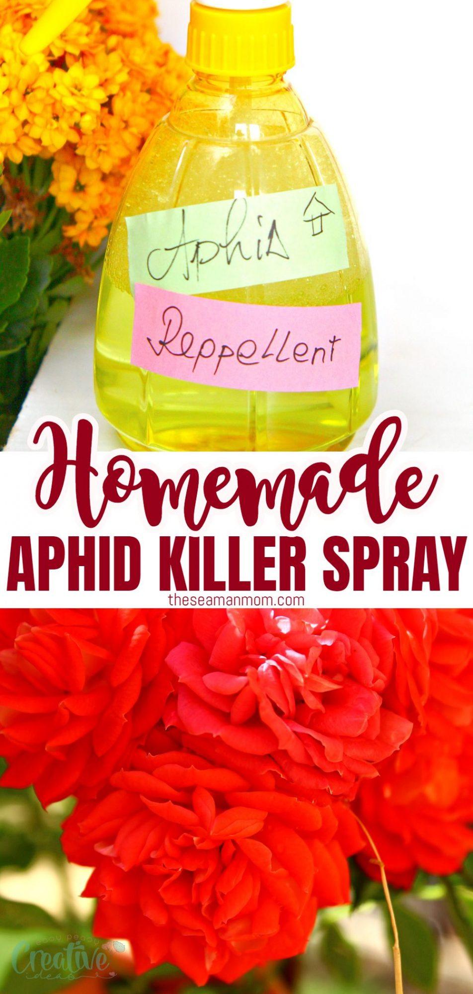 Homemade aphid spray