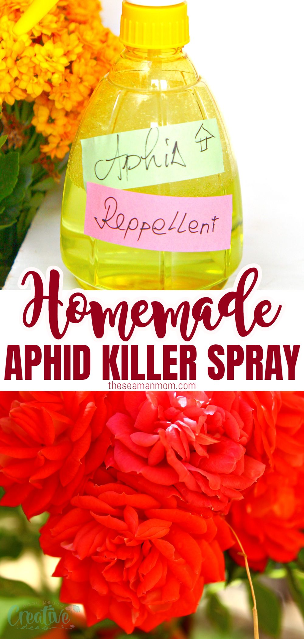 Getting rid of aphids in your garden doesn't have to involve toxic chemicals! Not when you can make your own natural homemade aphid spray in just a couple of minutes! via @petroneagu